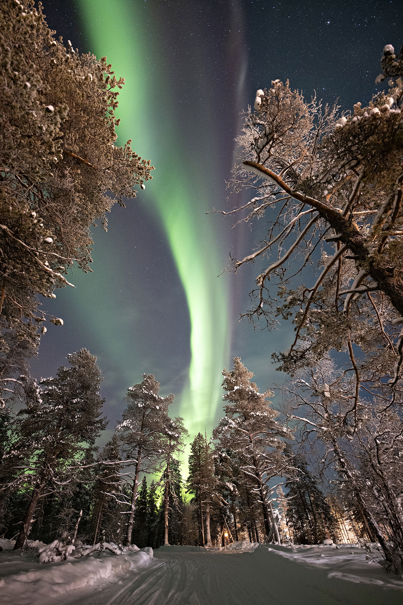 Choose your way to enjoy the Aurora Borealis: sitting back in a warm car or sleigh or walking in snowshoes.