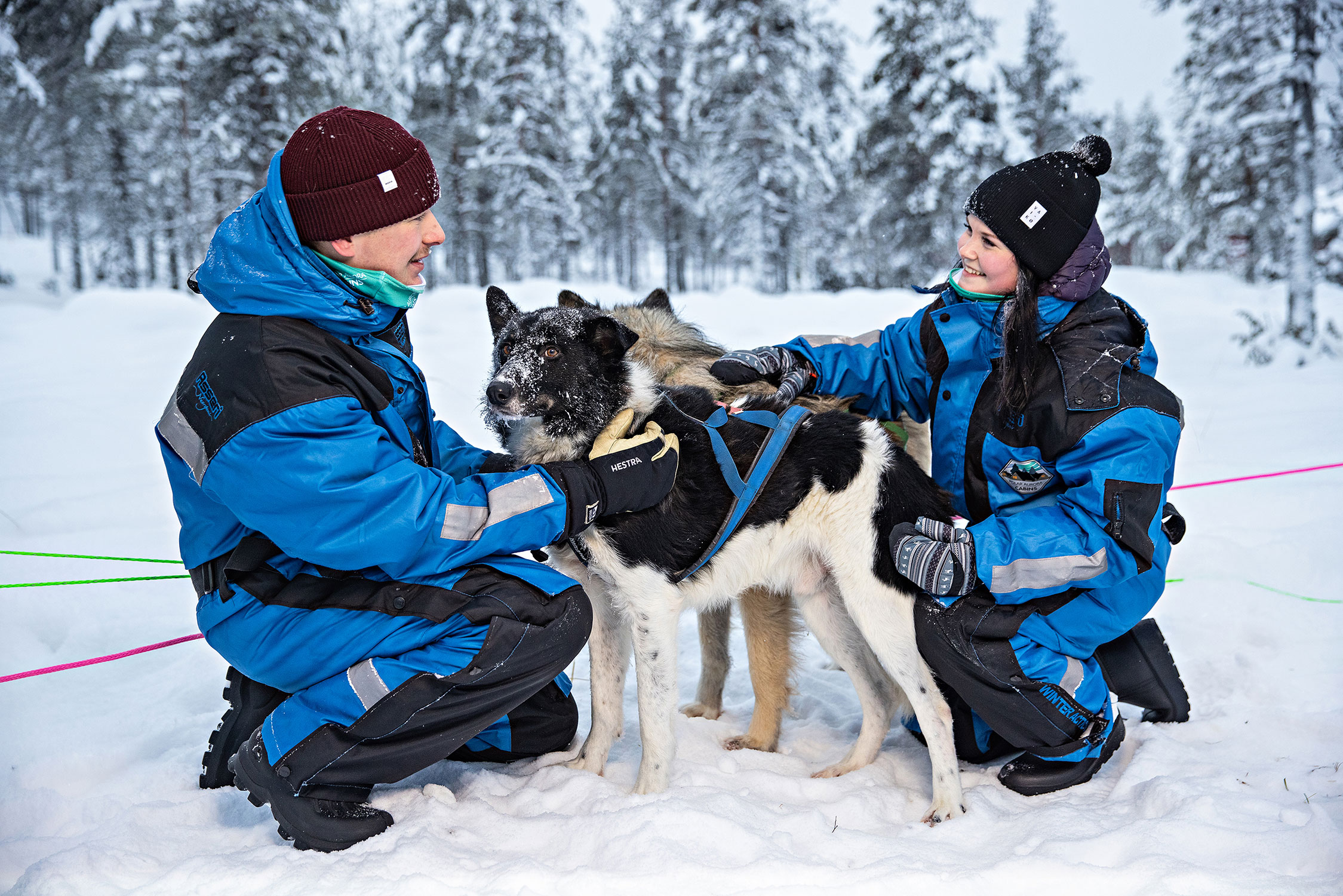 A husky safari is a great way to explore the arctic nature.